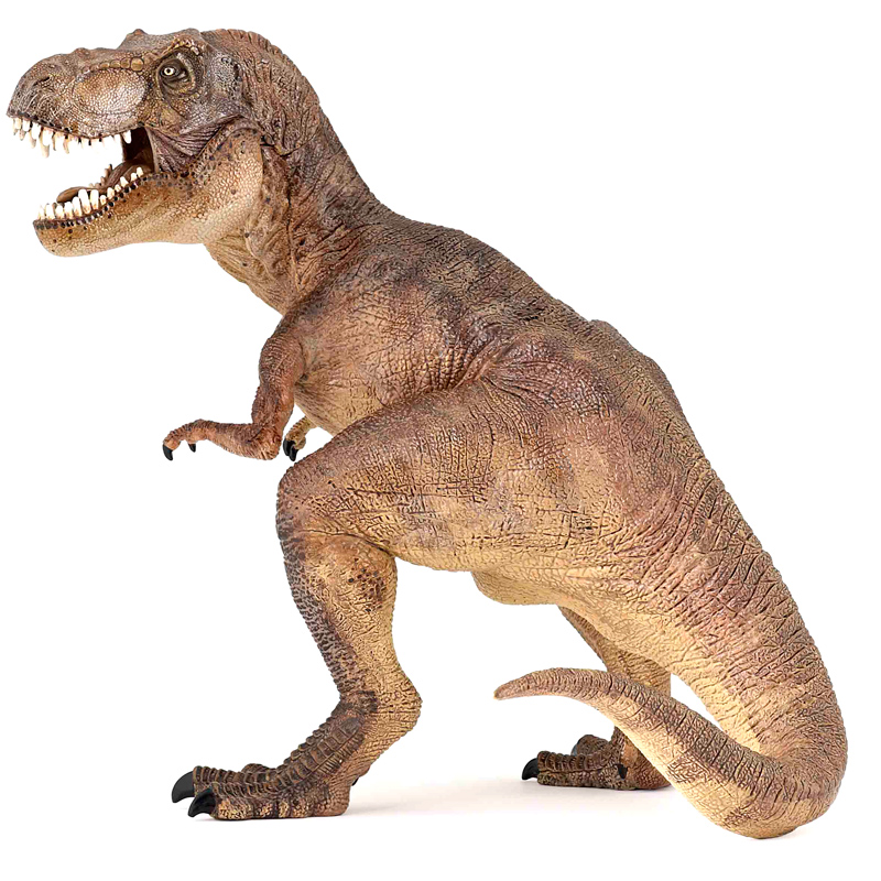T Rex Toy : Papo dinosaurs t rex collectable figure new ebay