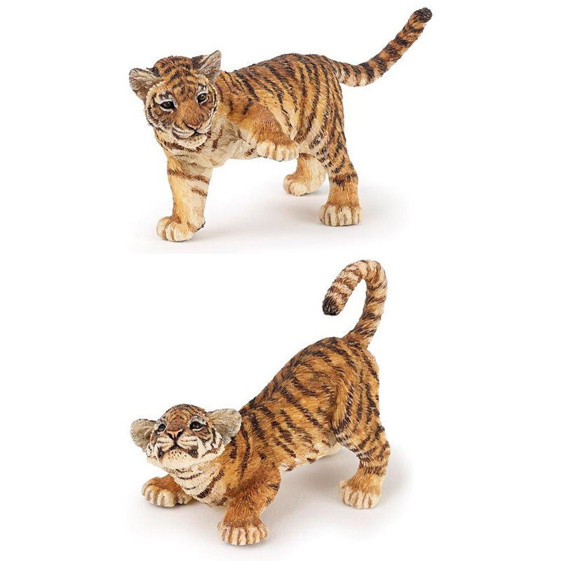 Tiger Cub from PAPO