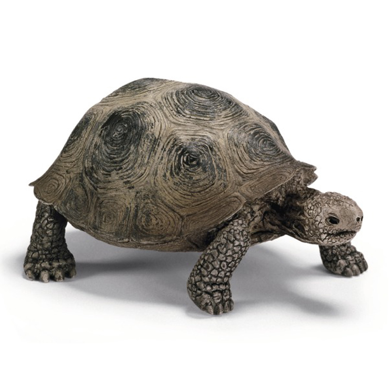 Turtle Toys For Turtles : Giant turtle from schleich wwsm
