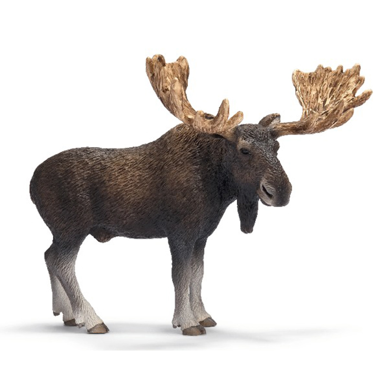 Moose Bull from Schleich   WWSM